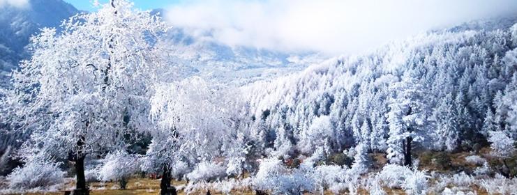 硗碛飘雪美景如画