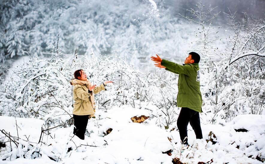 银装素裹美如画  雪景冬趣韵味足